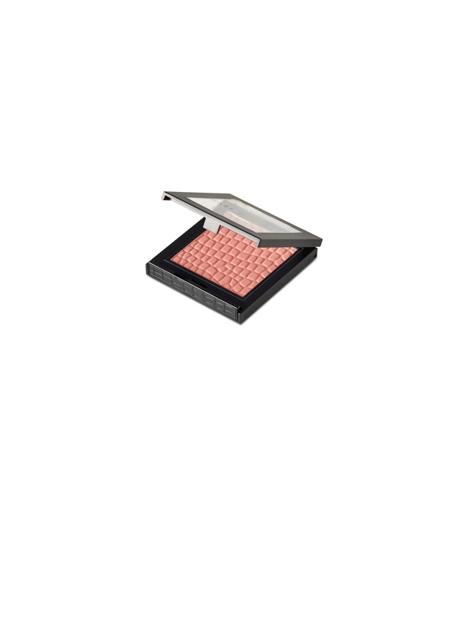 Make Up Store Blush Must Have