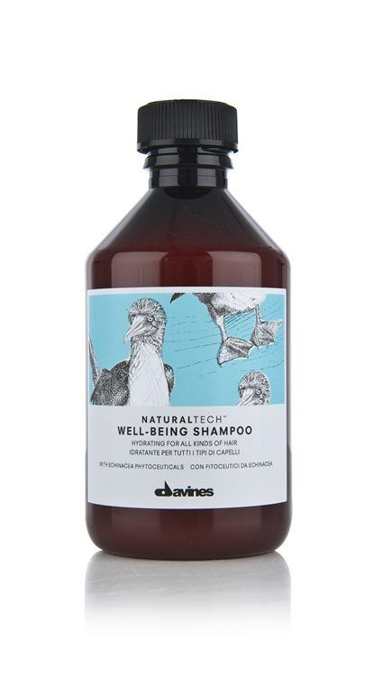 Davines NATURAL TECH Well Being Shampoo 250ml