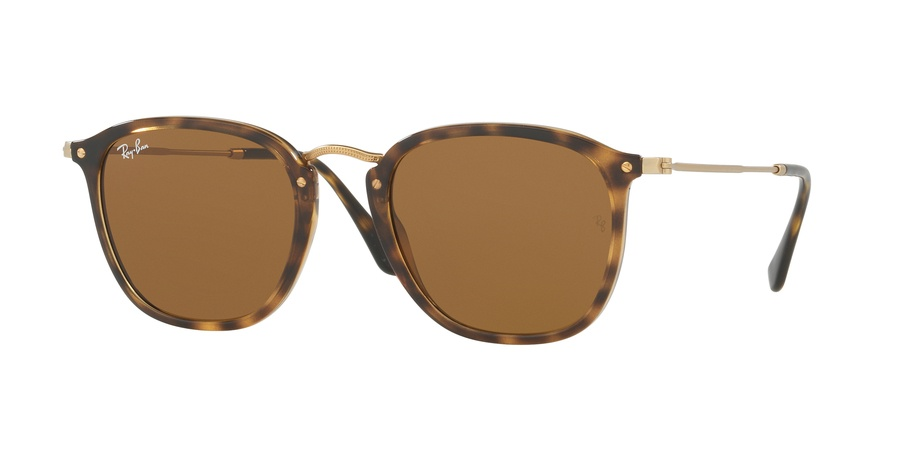Ray Ban RB2448N Brown